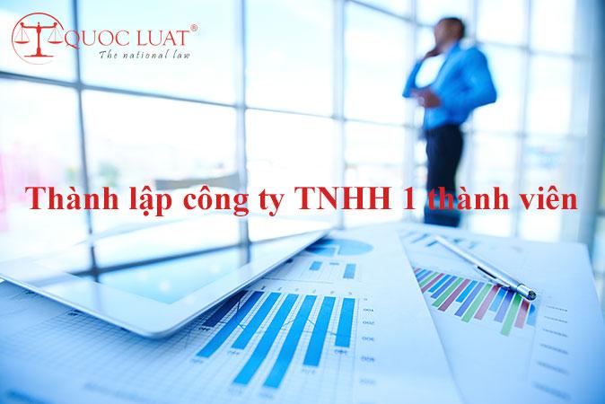 Thành lập công ty TNHH 1 thành viên (mtv) ở TPHCM